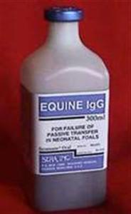 Seramune Equine Igg Oral 300cc By Sera