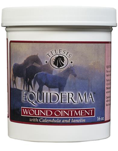 Equiderma Wound Ointment 16 oz By Telesis (Equiderma)