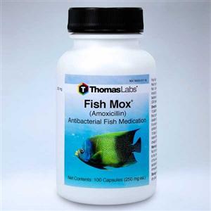Fish Mox Amoxicillin 250mg Each By Thomas Labs