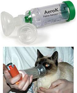 Aerokat Feline Aerosol Chamber (Small / Medium) Each By Trudell Medical