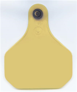 Xp 820 Insecticide Ear Tags B20 By Y Tex