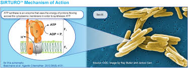 Image 5 of Rx Item-Sirturo ( Bedaquiline Fumarate ) 100mg 188 Tab By Janssen Pharma