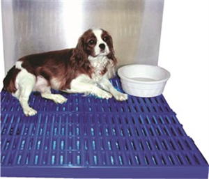 Paw Protector Cage Rack 15 X27.5 - (Fits 18 X28 Cage) Freight Char By Weck