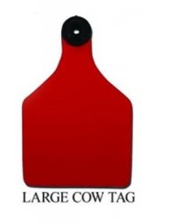 Ritchey Universal Large Cow Ear Tag, Blank, Yellow/Black By Ritchey