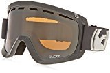 DRAGON - D1 Ski Goggle - LENS, Solid Grey/Ion + Amber RL - 2015