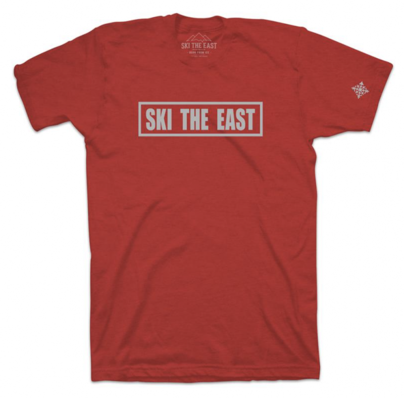 Image 0 of SKI THE EAST - Youth Foundation Tee - Cardinal 2019