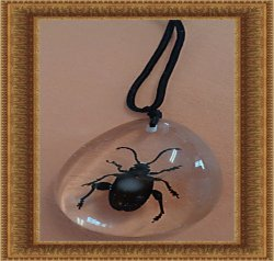 Amber Style Real Bug/Beetle/Insect Design Necklace Unisex With Black Rope Chain