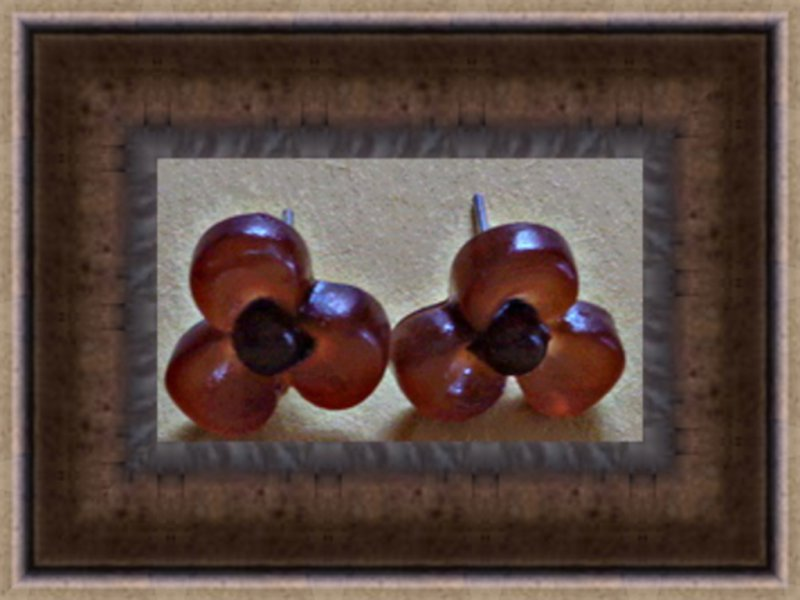 Image 0 of Brown Flower Design Stud Earrings