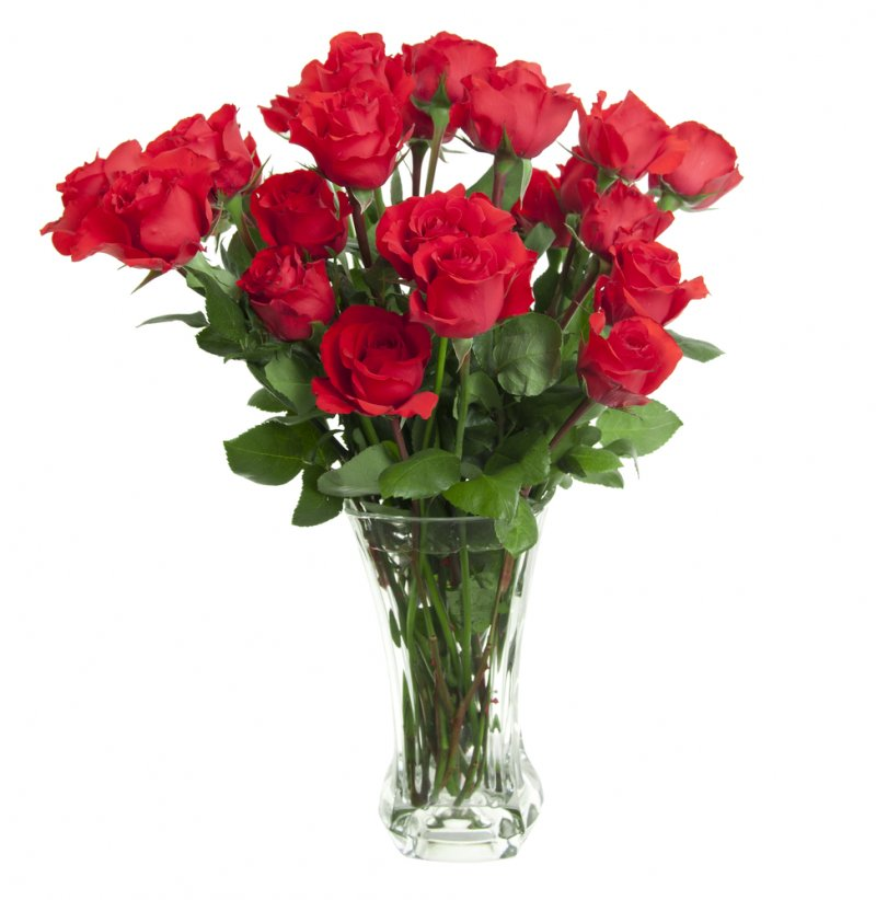 One Dozen Long Stemmed Roses in a Glass Vase