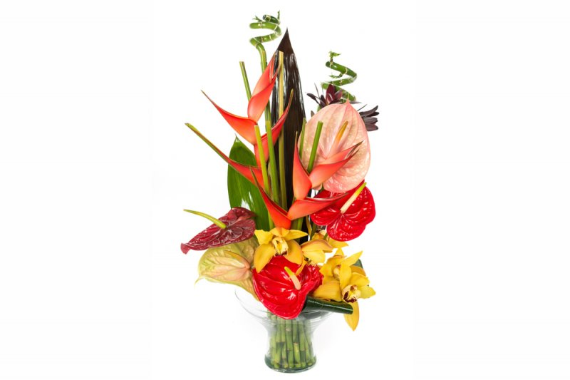 Image 0 of Tropical Sensation Flower Arrangement in Glass Vase