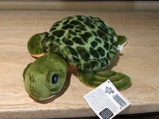 Image 0 of Loggy - Loggerhead Turtle Plush Toy