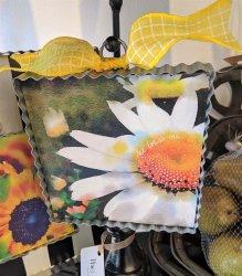 Daisy Gallery Print