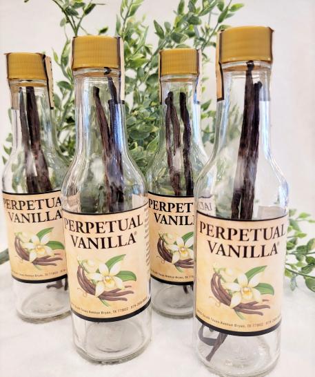 Image 0 of Perpetual Vanilla