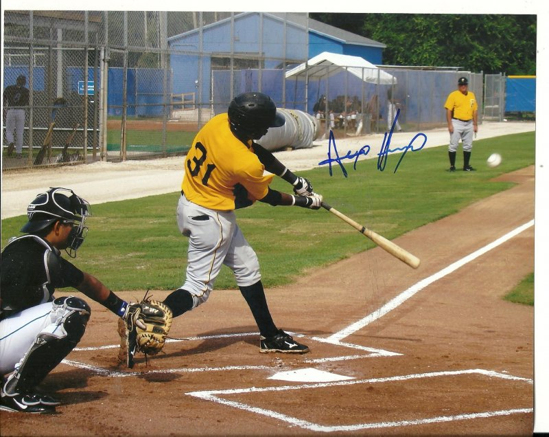 Image 0 of Alen Hanson Autographed Signed 8x10 Photo Pirates Top Prospect