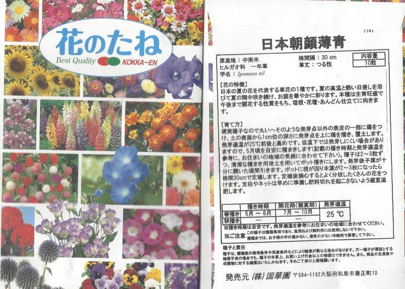 Image 1 of Japanese Morning Glory Seeds, Ipomoea Nil, Usu Ao, Pale Blue Kokka-en Company