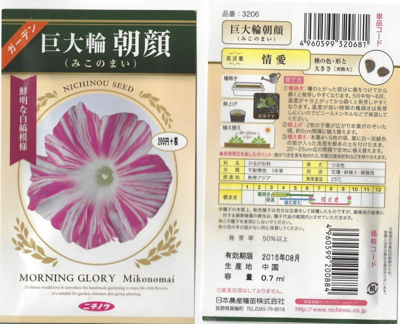Image 1 of Japanese Morning Glory Seeds: Miko No Mai, Sibyl's Dance  Large Pink/white