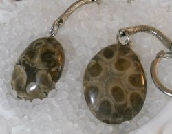 '.Petoskey stone key chain Back.'