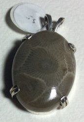 Petoskey Stone Oval Pendant SS Mount 18 x 25 mm