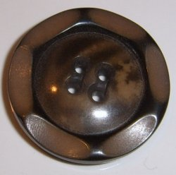 Large Brown Vegetable Ivory Button