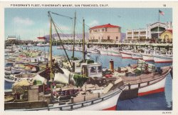 Fishing fleet berthed at fisherman 39 s wharf san francisco for Fishing store san francisco
