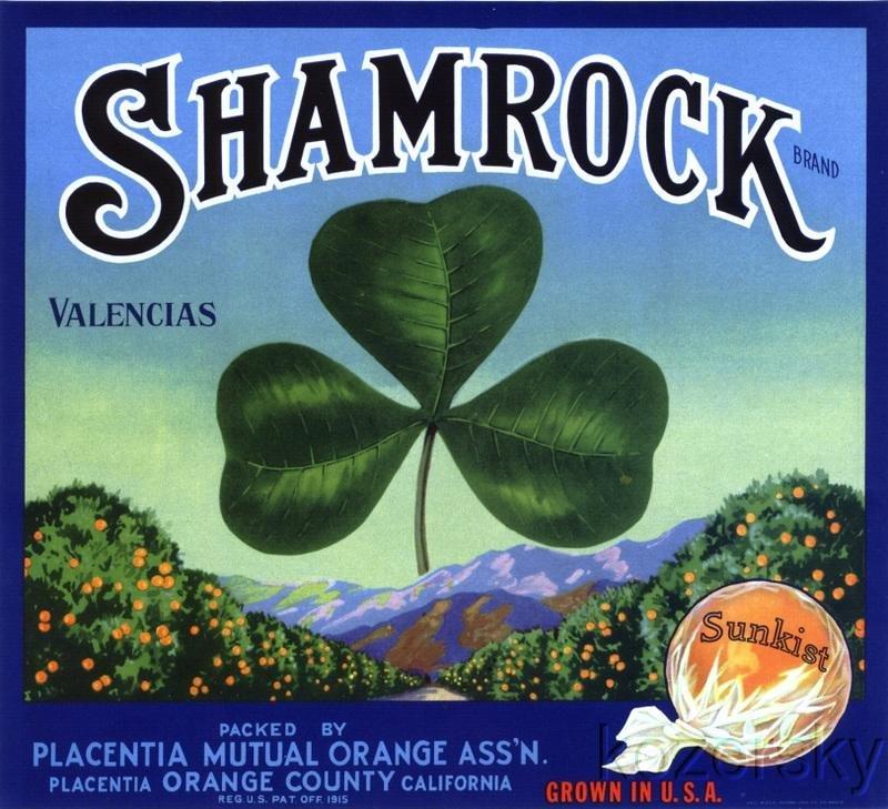 Shamrock Valencia Orange Crate Label