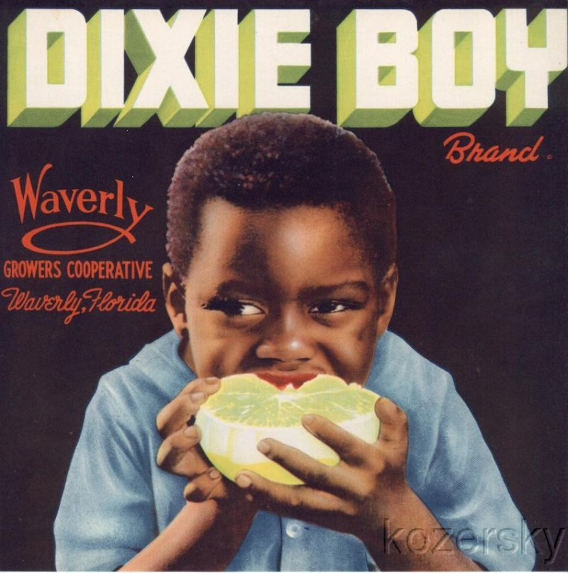 Dixie Boy Brand Grapefruit Crate Label