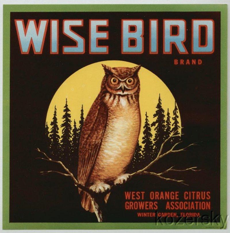 Wise Bird Brand Citrus Crate Label