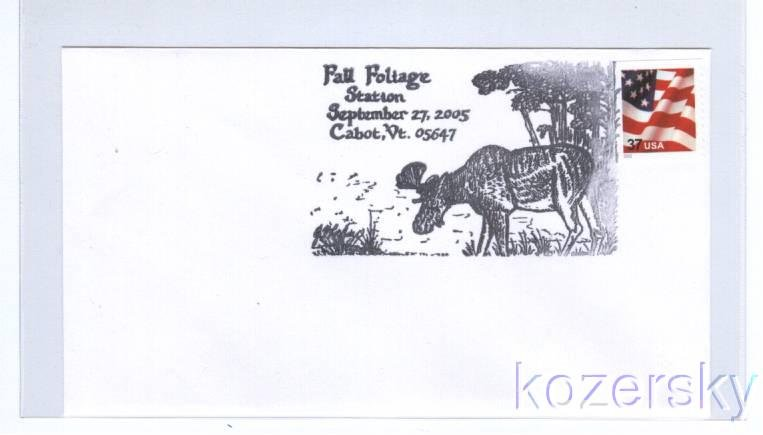 Moose in Woods Topical Pictorial Postmark Cancel