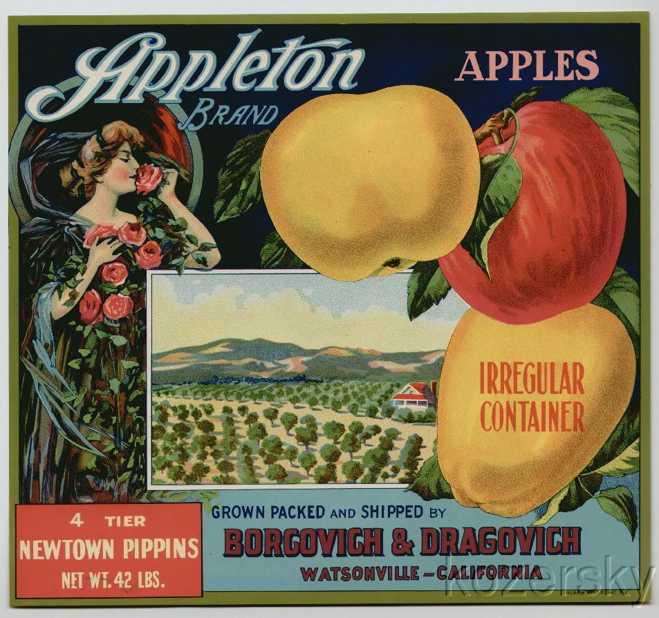 Thumbnail of Appleton Brand Vintage Apple Crate Label