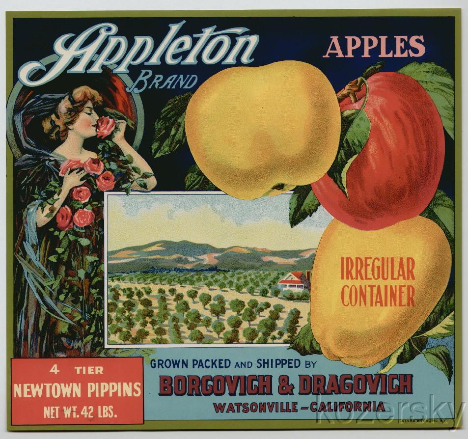 Appleton Brand Apple Crate Label