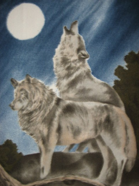 Image 1 of Wolf howling at the moon northern lights fleece blanket