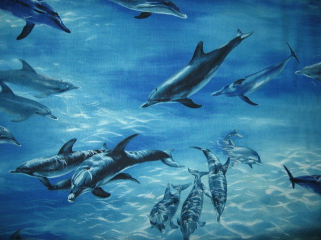 Michael Miller Dolphin dolphins ocean 100% cotton fabric by the yard /