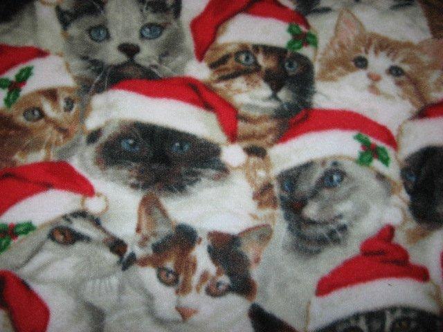 Image 1 of Santa Hat Christmas Kitty Kitten Cats crate fleece Blanket Last one