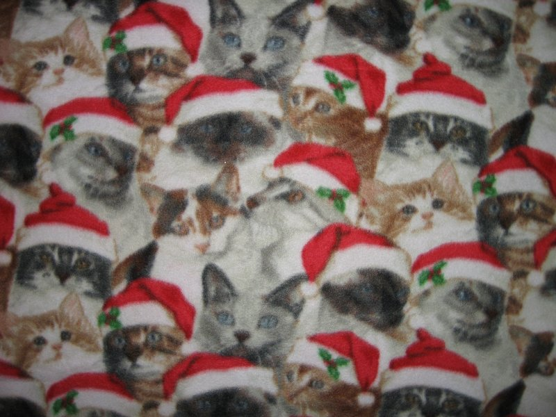 Santa Hat Christmas Kitty Kitten Cats crate fleece Blanket Last one