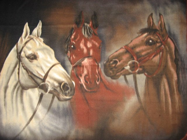 Horses Portrait Stunning Fleece Blanket Panel  finished edges