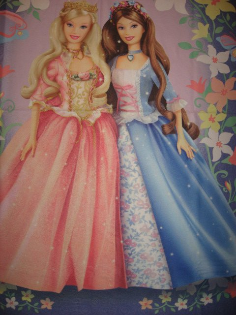 Barbie in the Prince and Pauper child bed size fleece blanket
