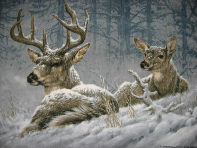 Deer Buck Doe by Artist Fanning Fleece Blanket Free Shipping