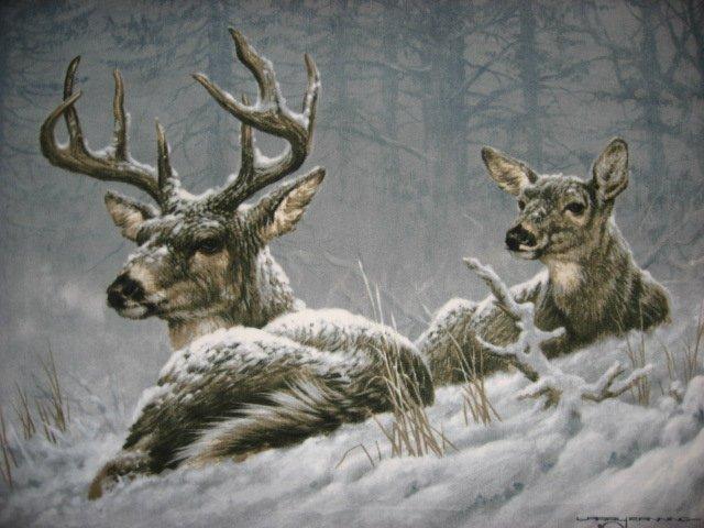 Image 1 of Deer exquizit fleece Blanket  Buck Doe  Artist Fanning 48