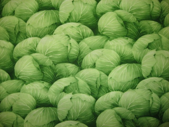 Kyle's Marketplace Green Cabbage RJR Fabric FQ or 1/4 yard