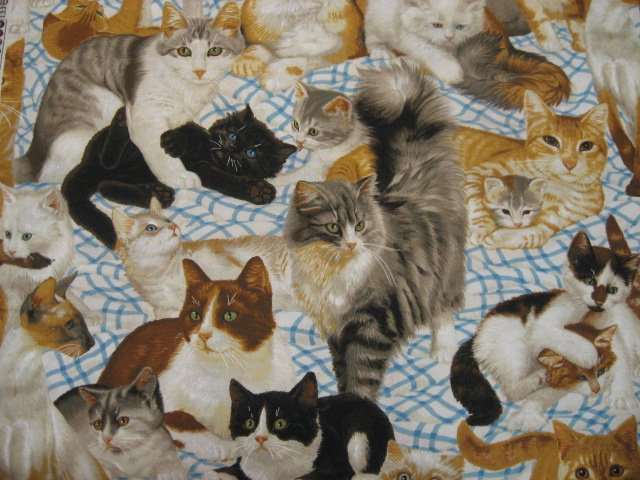 Daisy Kingdom Kitty Cats at Play and Resting cotton Quilting fabric by the yard