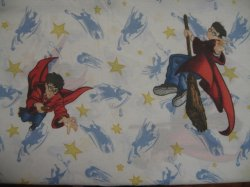 Harry Potter Gently Used Twin Size fabric Top Sheet No Pillow case