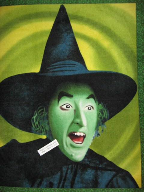 Wizard Of Oz Wicked Witch Soft New Antipill Fleece Blanket