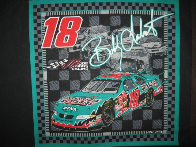 Bobby Labonte #18 Nascar two Fabric pillow panels to sew