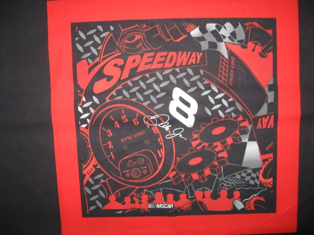 Dale Earnhardt #8 Nascar two of the same Speedway Fabric pillow panels to sew