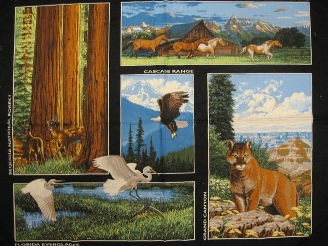 Image 0 of National Parks Everglades Grand Canyon cotton Fabric Panel to sew //
