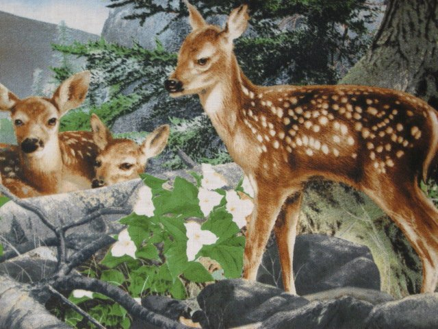 Deer Fawn Doe Wolf cotton Fabric wall panel set of four to sew /
