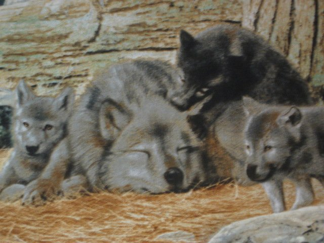 Image 4 of Deer Fawn Doe Wolf cotton Fabric wall panel set of four to sew /