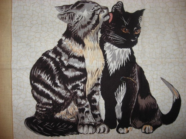 Image 1 of cat kitten kitty baby  Dad  M0m Fabric Pillow Panel set to sew Approx 1/2 yard