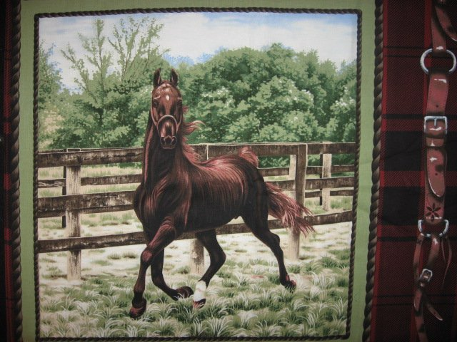 Horse Running in Farm Coral two Fabric Pillow Panels