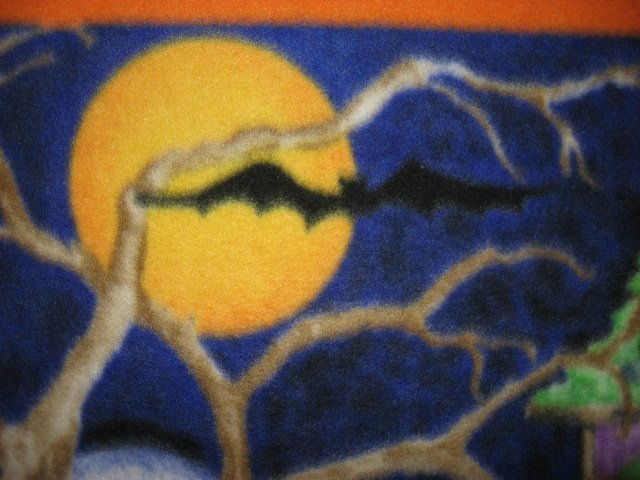 Image 5 of Halloween Haunted house witch ghost cat handmade new Fleece blanket RARE